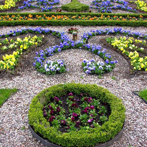planting av blomster i formasjon